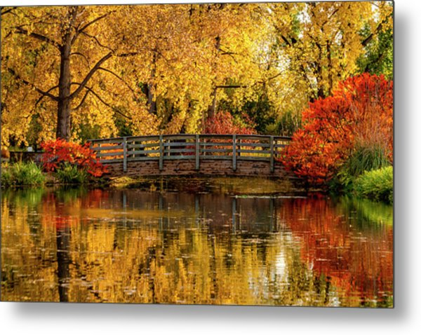 Autumn Color By The Pond Metal Print