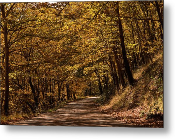 Metal Print featuring the photograph Autumn Colours by Nikos Stavrakas