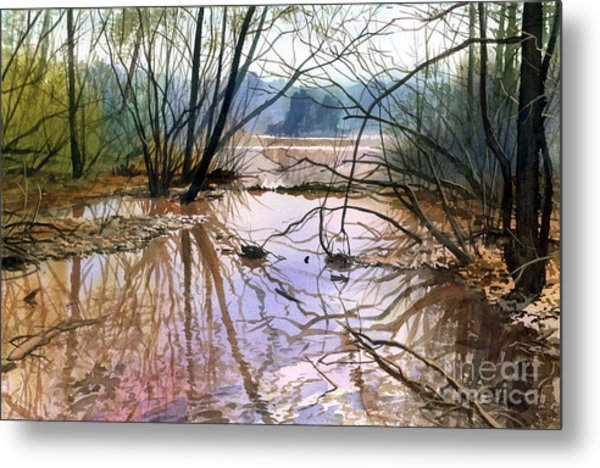 Autumn Creek Metal Print