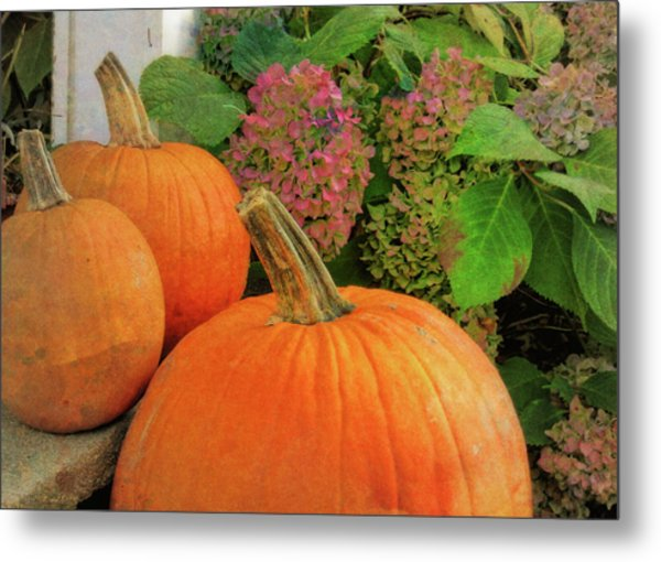 Autumn Decorations Metal Print by JAMART Photography