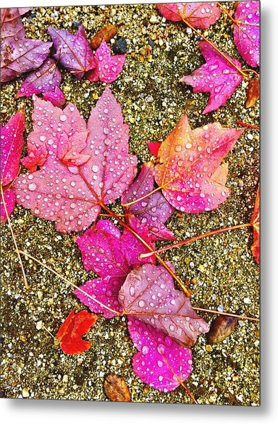 Autumn Dew Metal Print