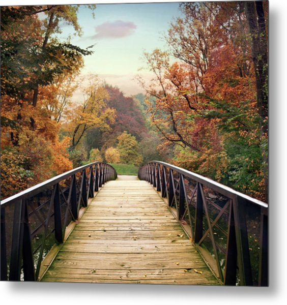 Metal Print featuring the photograph Autumn Encounter by Jessica Jenney