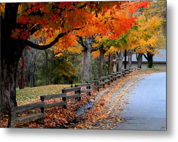 Autumn Fence Metal Print by Gary Bydlo