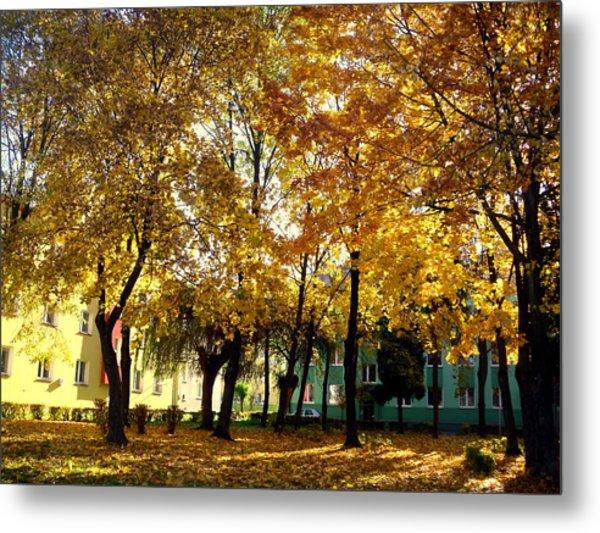 Autumn Festival Of Colors Metal Print