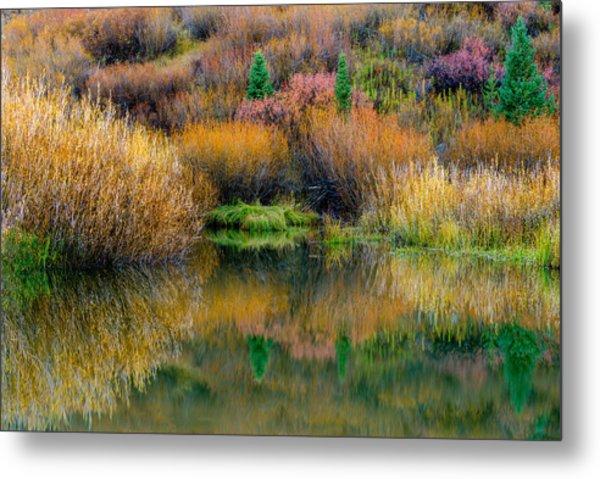 Autumn Fishing Hole Metal Print