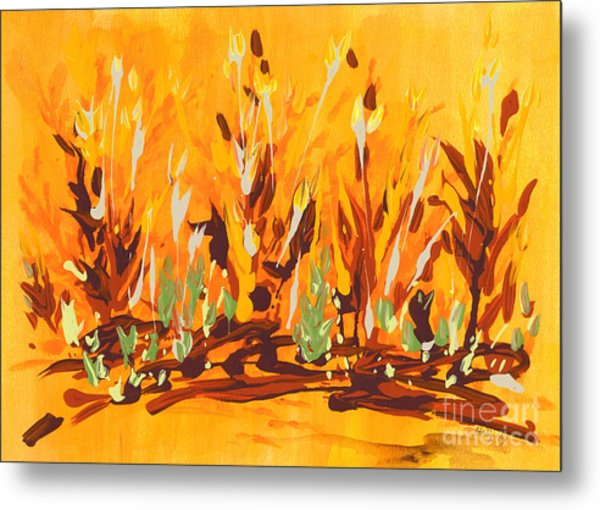 Autumn Garden Metal Print
