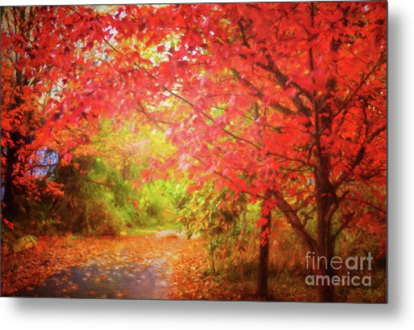 Glorious Foliage On The Rail Trail Metal Print