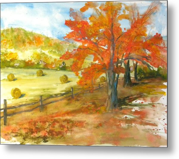 Autumn Harvest Metal Print by Kris Dixon