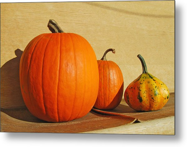 Autumn Harvest Still Life Metal Print by Tony Ramos