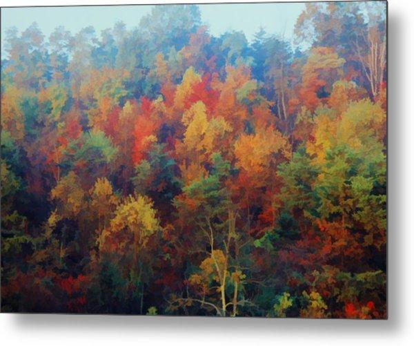 Autumn Hill Aglow Metal Print