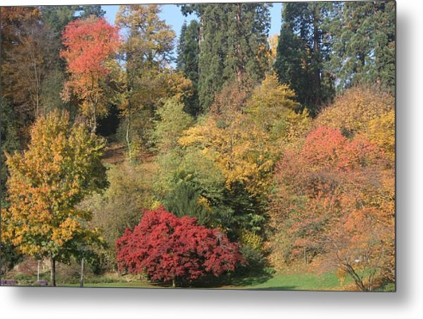 Autumn In Baden Baden Metal Print