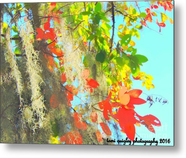 Autumn In Dixie  Metal Print