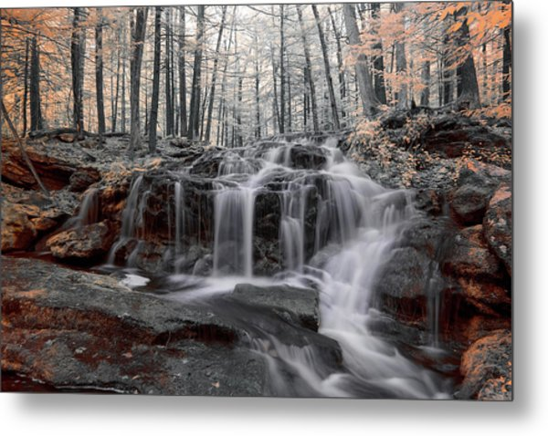 Autumn In Spring Infrared Metal Print