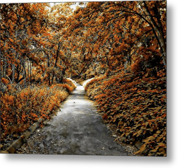 Autumn In Stamford Metal Print