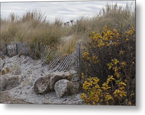 Autumn In The Dunes Metal Print