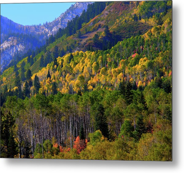 Metal Print featuring the photograph Autumn In Utah by Bryan Carter