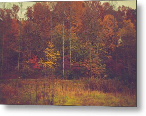Autumn In West Virginia Metal Print