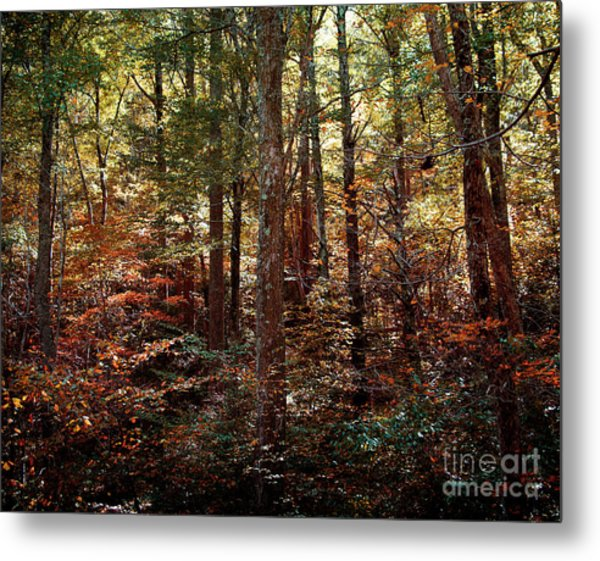 Autumn Is Stirring Metal Print
