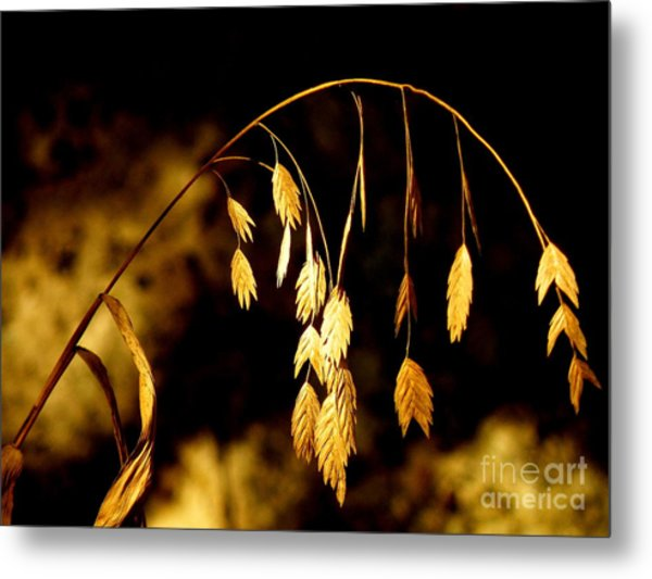 Autumn Jewelery Metal Print