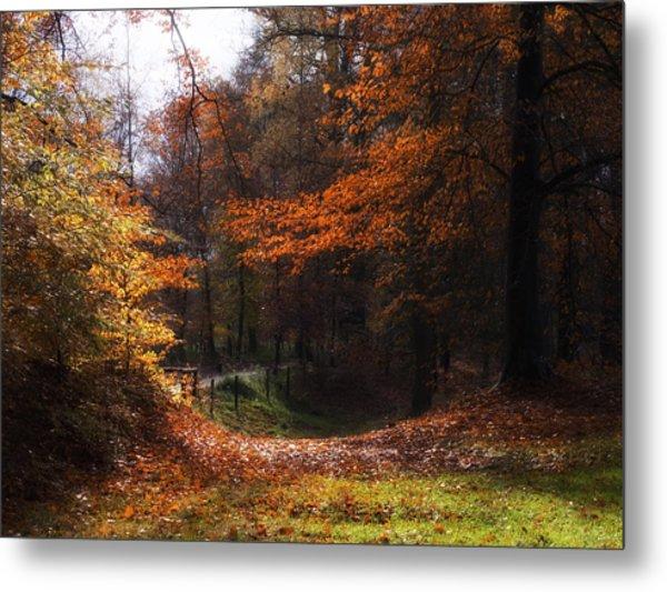 Autumn Landscape Metal Print by Artecco Fine Art Photography