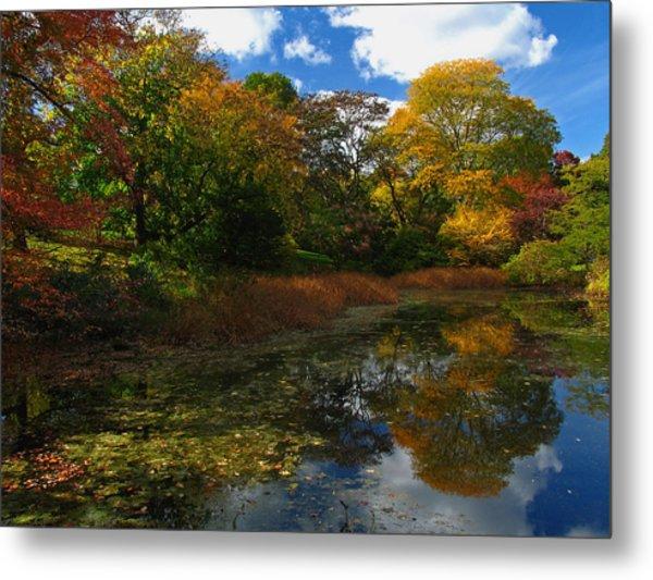 Autumn Landscape Metal Print by Juergen Roth