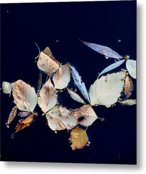 Autumn Leaves Abstraction Metal Print