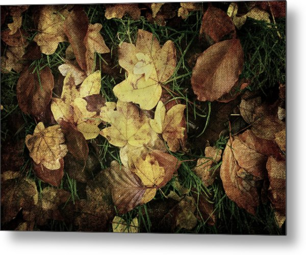 Autumn Leaves Are Falling Down... Metal Print