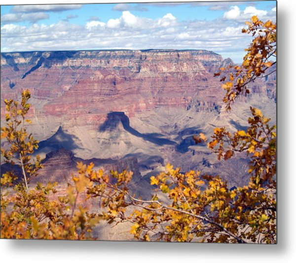 Autumn Leaves Metal Print by Carrie Putz