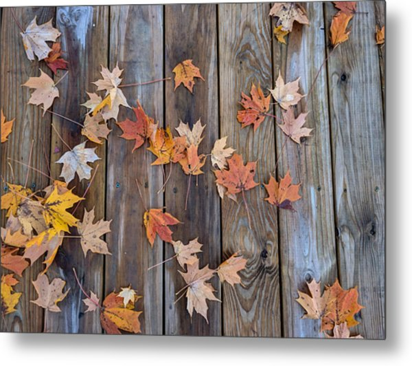 Autumn Leaves Fall Metal Print