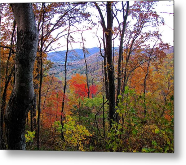 Autumn Leaves On Blue Ridge Parkway Metal Print