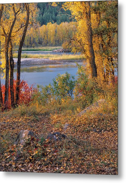 Autumn Metal Print by Leland D Howard