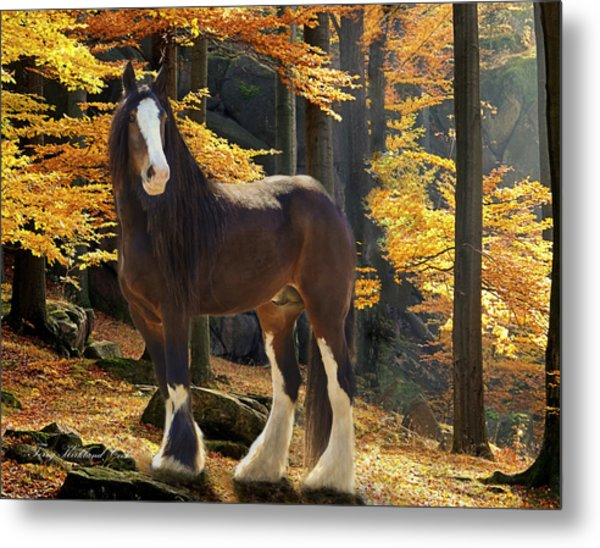 Autumn Majesty Metal Print