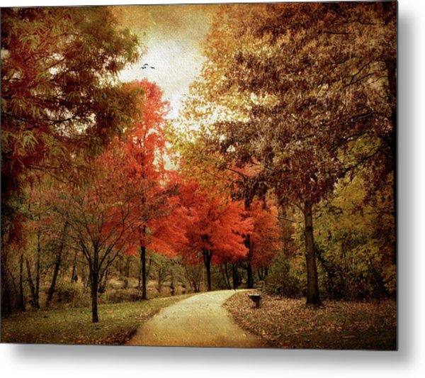 Autumn Maples Metal Print