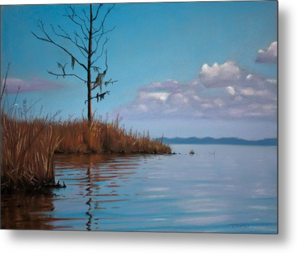 Autumn Marsh Reeds Metal Print