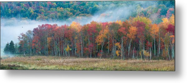 Autumn Morning Mist Metal Print