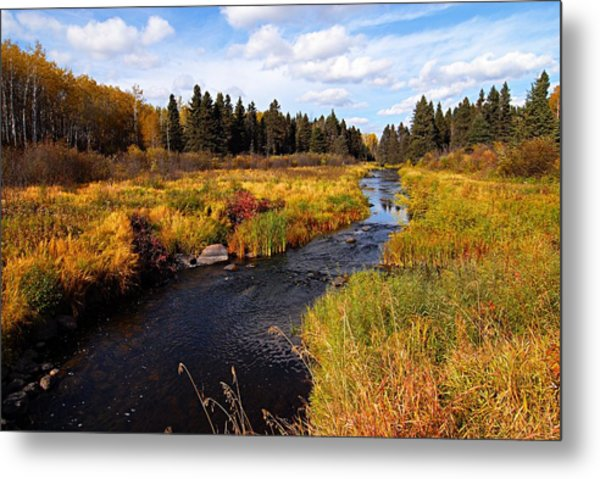 Autumn On Jackfish Creek Metal Print