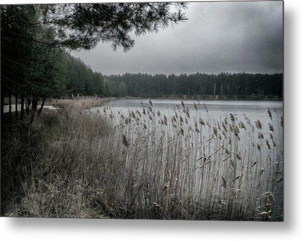 Autumn On Lake. Oleshnya, 2016. Metal Print