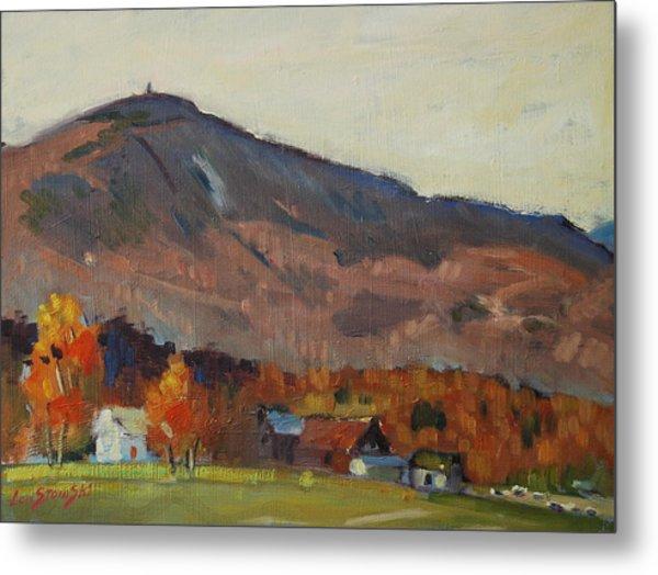 Autumn On The Mountain Metal Print by Len Stomski