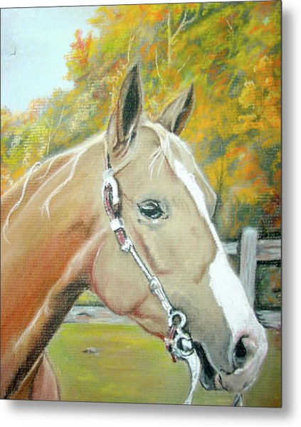 Autumn Palomino Metal Print by Crystal  Harris-Donnelly