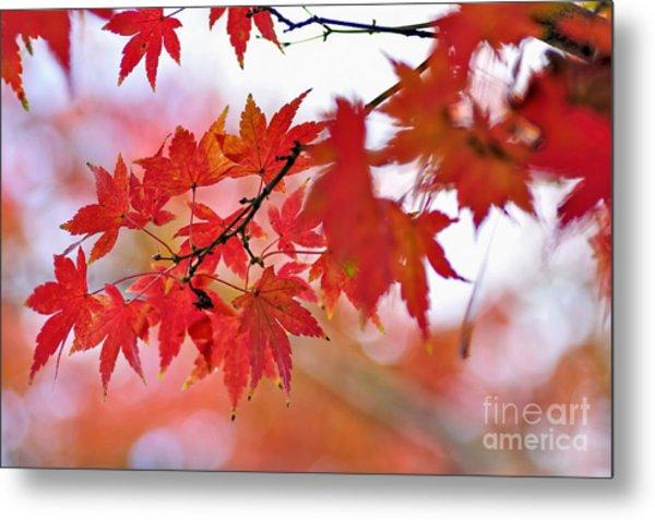 Autumn Pastel Metal Print