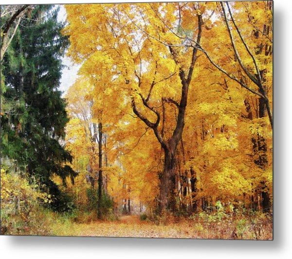 Autumn Path Metal Print by Susan Savad
