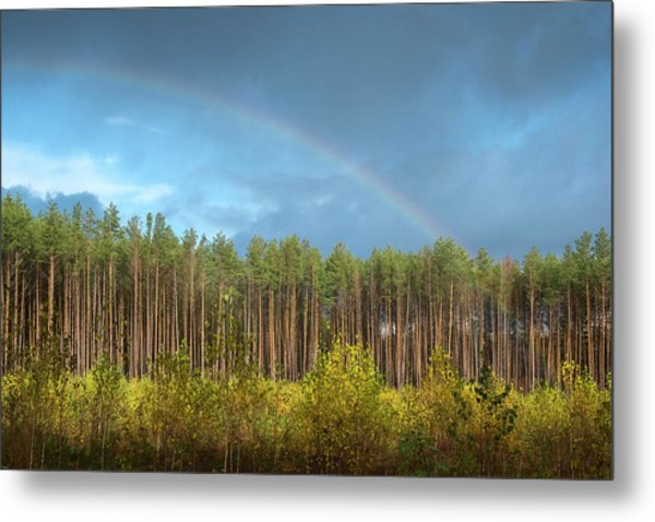 Autumn Rainbow. Sunychne, 2016. Metal Print