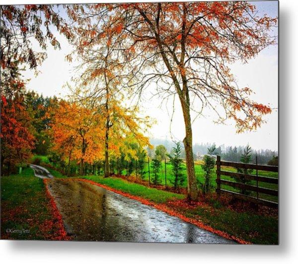 Autumn Rains Metal Print