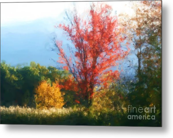 Autumn Red And Yellow Metal Print