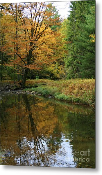 Autumn Reflections Metal Print by Debra Straub