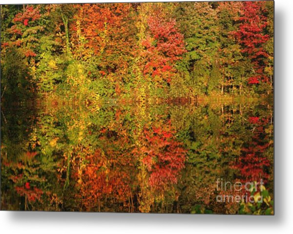 Autumn Reflections In A Pond Metal Print