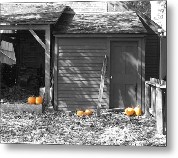Autumn Rest Metal Print