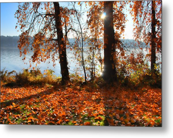 Autumn. Metal Print