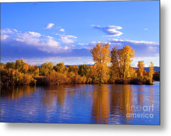 Autumn Shimmering Metal Print by Barbara Schultheis
