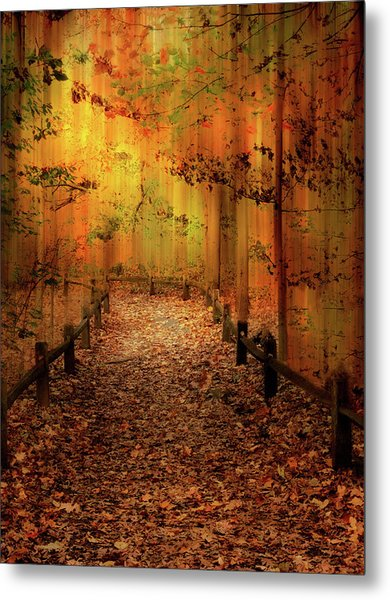 Metal Print featuring the photograph Autumn Silkscreen by Jessica Jenney
